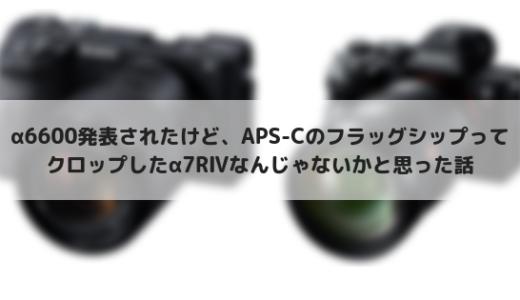 ソニーのAPS-Cフラッグシップはα6600ではなくα7RⅣだと思った話