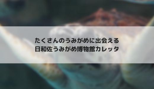 【四国旅行2】日和佐うみがめ博物館カレッタはうみがめだらけ!