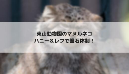 【東山動物園】ハニーとレフの共演を見てきました