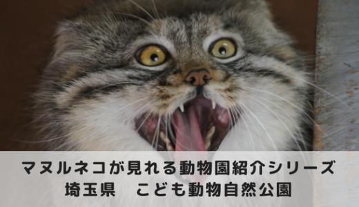 マヌルネコに会える動物園~埼玉こども動物自然公園編