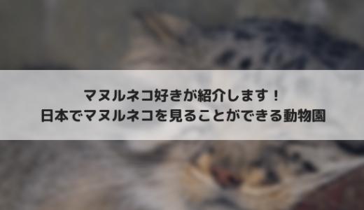 マヌルネコ好きが紹介する、マヌルネコに会える日本の動物園!