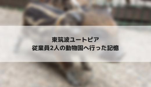 【天才!志村どうぶつ園】東筑波ユートピアへ行ったことがありました