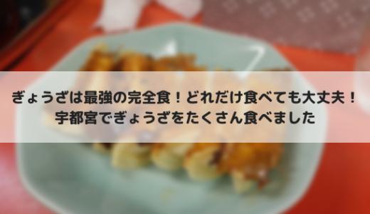 宇都宮餃子を食べ歩き!食べ歩いたお店を紹介します