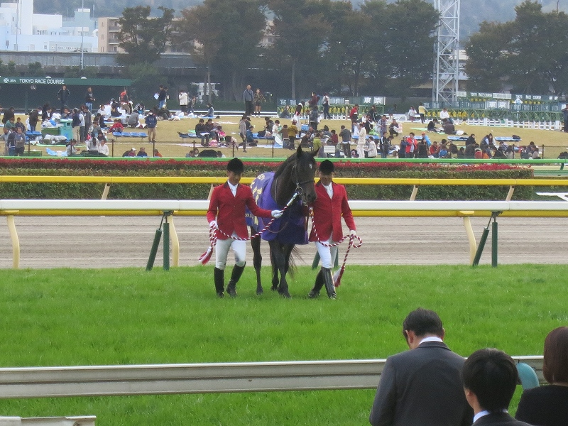 昼は東京競馬場、夜は大井競馬場の旅